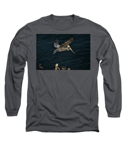 Fly-by Long Sleeve T-Shirt by James David Phenicie