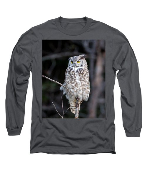 Great Horned Owl  Long Sleeve T-Shirt by Jack Bell