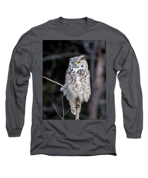 Great Horned Owl  Long Sleeve T-Shirt