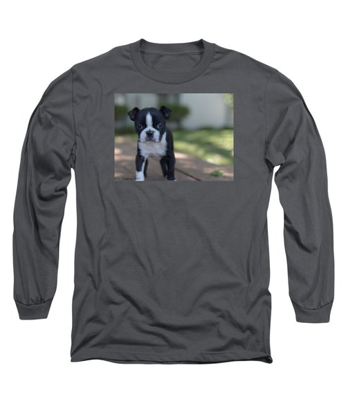 Long Sleeve T-Shirt featuring the photograph Harley As A Puppy by Lora Lee Chapman
