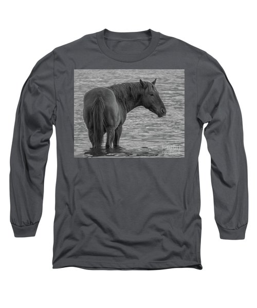 Horse 10 Long Sleeve T-Shirt