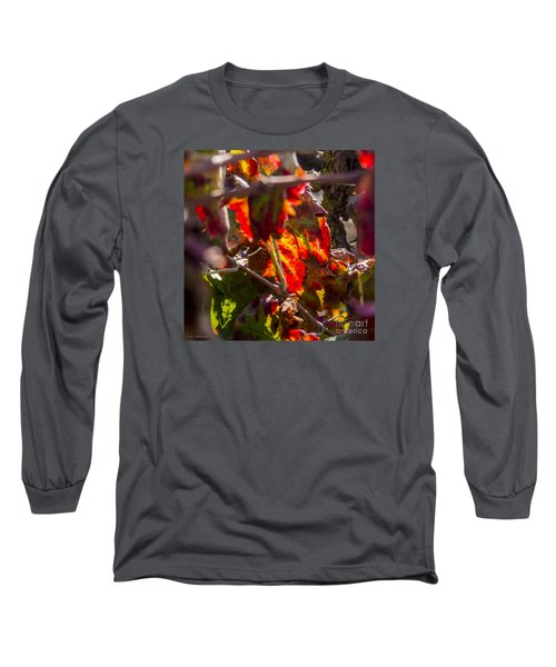 Hot Autumn Colors In The Vineyard 05 Long Sleeve T-Shirt by Arik Baltinester