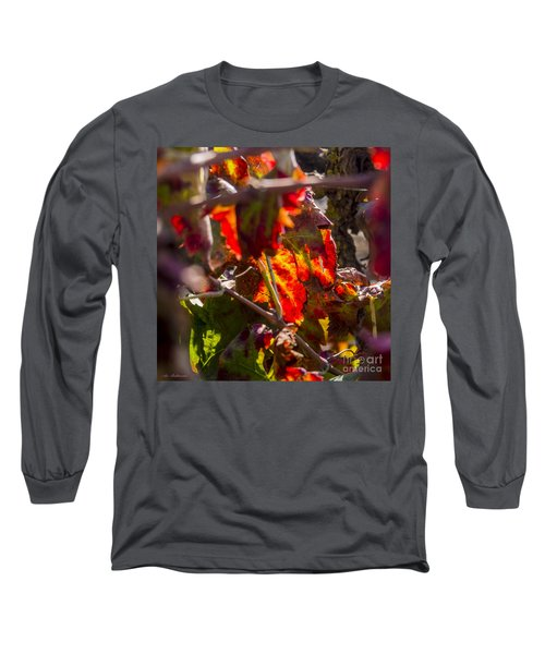 Long Sleeve T-Shirt featuring the photograph Hot Autumn Colors In The Vineyard 05 by Arik Baltinester