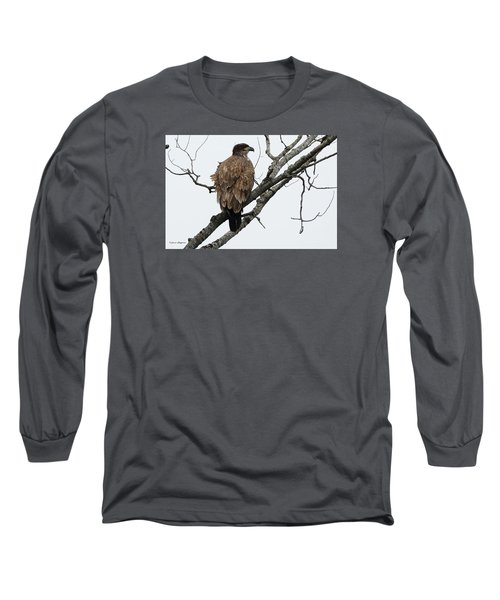Juvenile Eagle  Long Sleeve T-Shirt