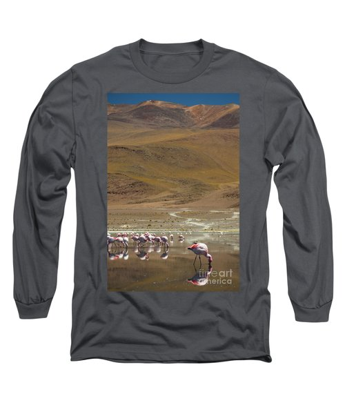 Long Sleeve T-Shirt featuring the photograph Laguna Colorada, Andes, Bolivia by Gabor Pozsgai