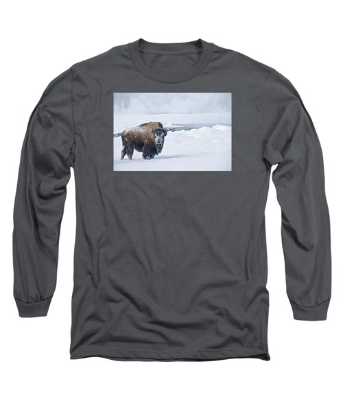 Lone Bison Long Sleeve T-Shirt by Gary Lengyel
