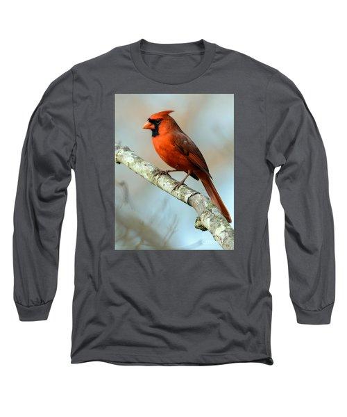 Male Cardinal Long Sleeve T-Shirt by Debbie Green
