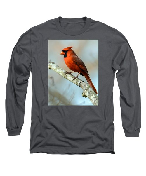 Male Cardinal Long Sleeve T-Shirt
