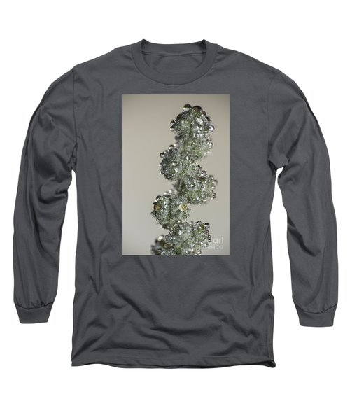 Meadow Flower And Drops Long Sleeve T-Shirt by Odon Czintos