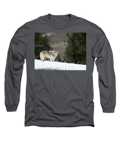 Mr. Brown Long Sleeve T-Shirt