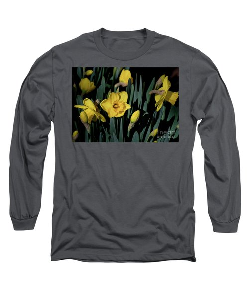 Camelot Daffodils Long Sleeve T-Shirt