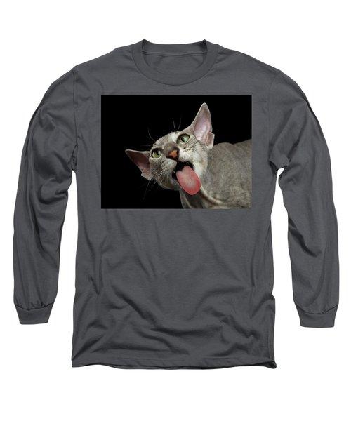 Peterbald Sphynx Cat On Black Background Long Sleeve T-Shirt