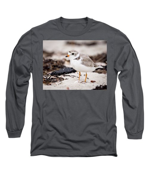 Piping Plover Long Sleeve T-Shirt