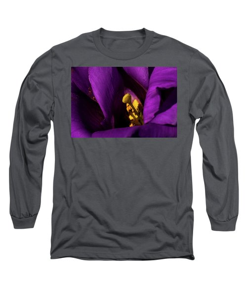 Long Sleeve T-Shirt featuring the photograph Purple And Yellow by Jay Stockhaus