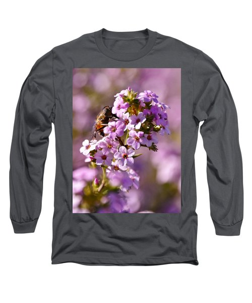 Purple Blossoms And Hoverfly Long Sleeve T-Shirt by Werner Lehmann