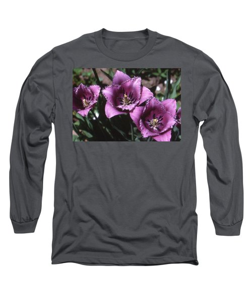 Purple Flowers Two  Long Sleeve T-Shirt by Lyle Crump