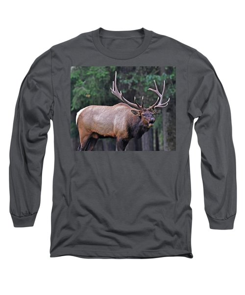 Long Sleeve T-Shirt featuring the photograph  Royal Roosevelt Bull Elk by Jack Moskovita