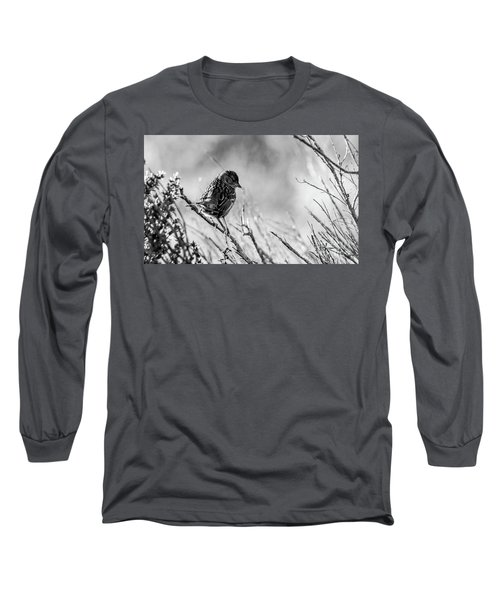 Snarky Sparrow, Black And White Long Sleeve T-Shirt