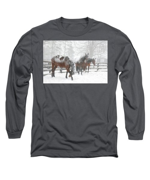 Tails To The Wind Long Sleeve T-Shirt by Gary Hall