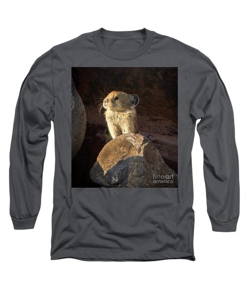 The Coast Is Clear Wildlife Photography By Kaylyn Franks Long Sleeve T-Shirt
