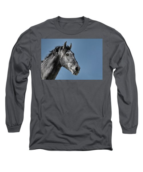 The Stallion Long Sleeve T-Shirt