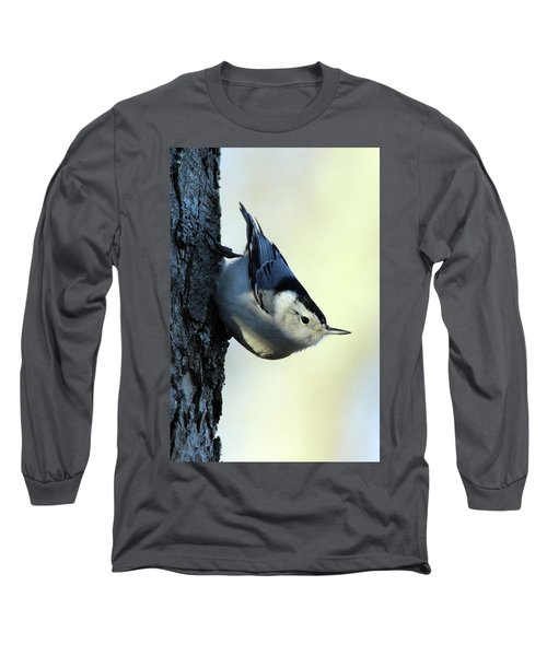White Breasted Nuthatch Wading River New York Long Sleeve T-Shirt by Bob Savage