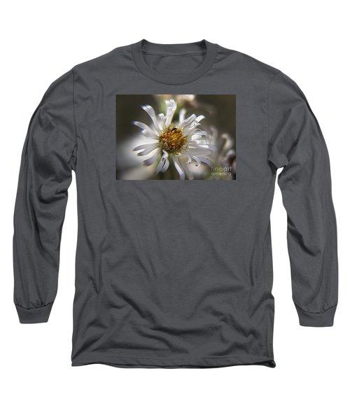 Wild Aster Long Sleeve T-Shirt by Yumi Johnson