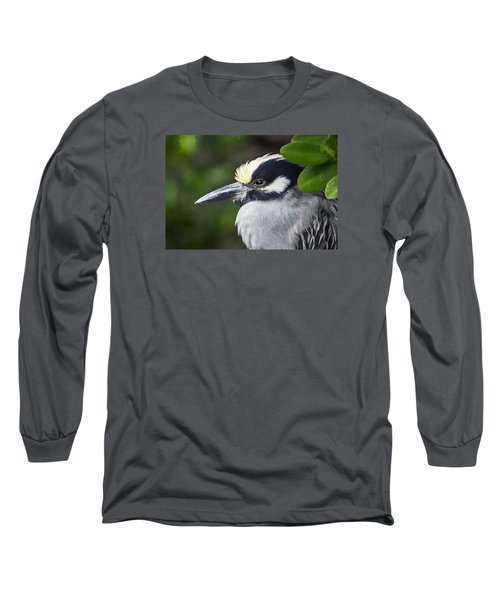 Yellow-crowned Night Heron Long Sleeve T-Shirt