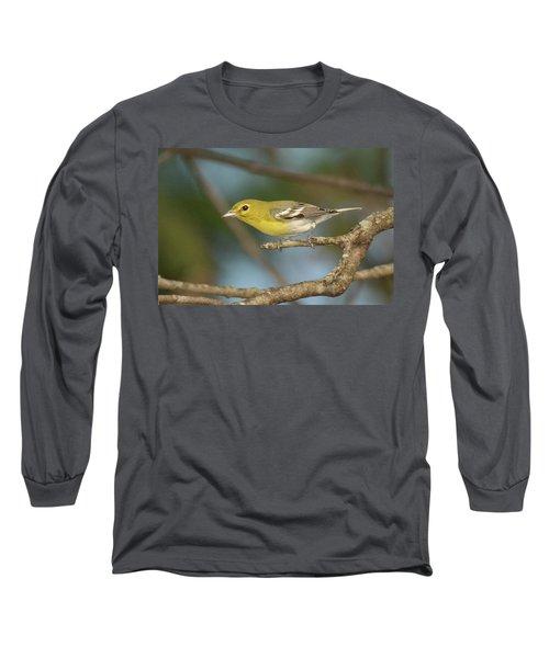 Yellow-throated Vireo Long Sleeve T-Shirt by Alan Lenk