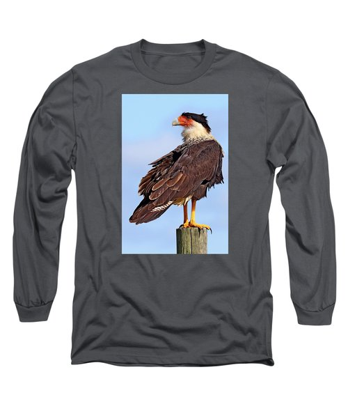 Crested Caracara Long Sleeve T-Shirt