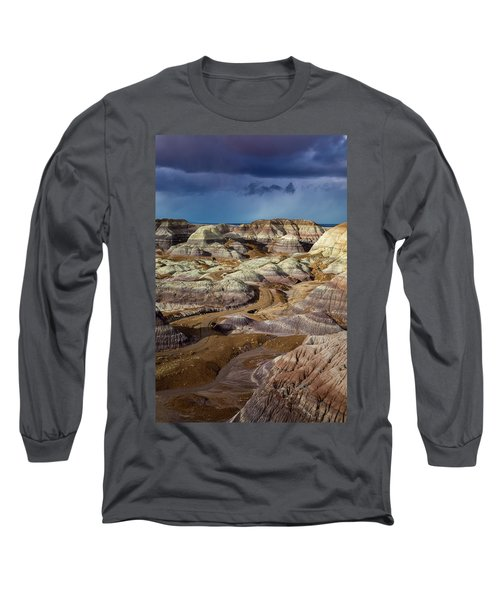 The Petrified Forest National Park Long Sleeve T-Shirt