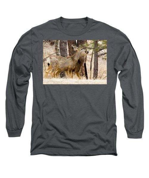 Mule Deer In The Pike National Forest Of Colorado Long Sleeve T-Shirt