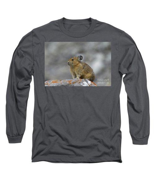 151221p238 Long Sleeve T-Shirt