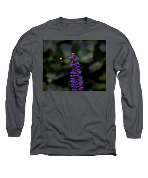 Long Sleeve T-Shirt featuring the photograph Bee by Jay Stockhaus