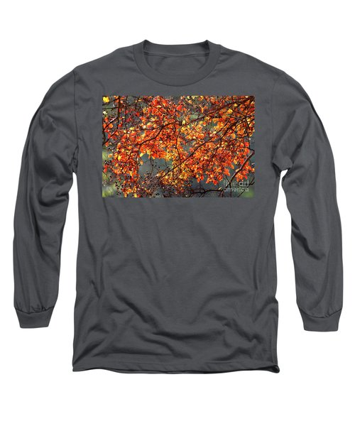 Long Sleeve T-Shirt featuring the photograph Fall Leaves by Nicholas Burningham