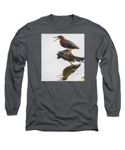Long Sleeve T-Shirt featuring the photograph Green Heron by Ricky L Jones