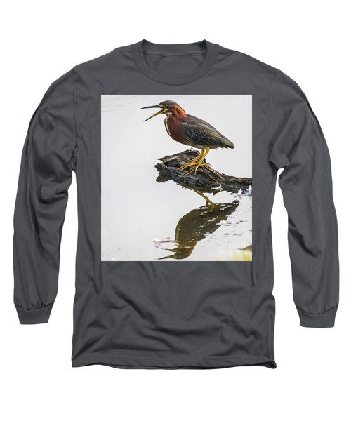 Green Heron Long Sleeve T-Shirt