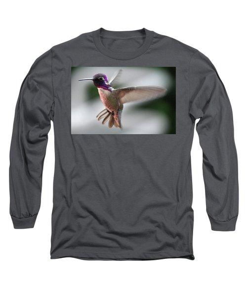 Male Anna's In Flight Long Sleeve T-Shirt by Jay Milo