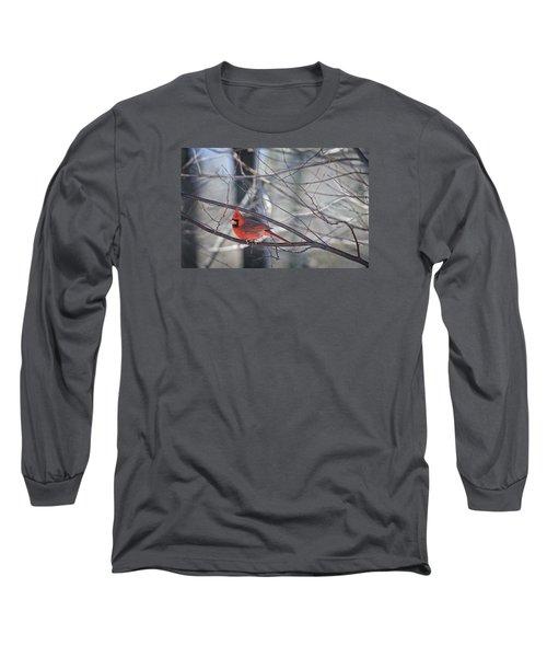 Northern Cardinal Long Sleeve T-Shirt