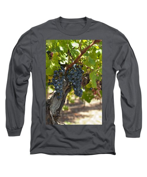 Long Sleeve T-Shirt featuring the photograph Red Vines by Ulrich Schade