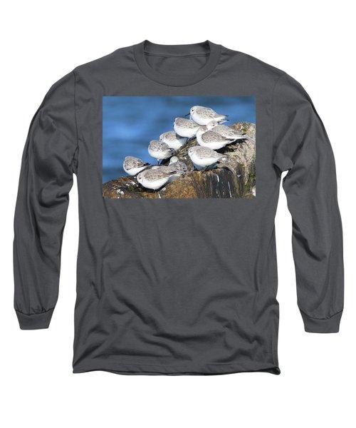 Sanderling Westhampton New York Long Sleeve T-Shirt