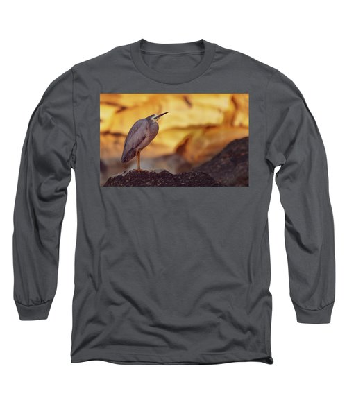 White-faced Heron At The Beach Long Sleeve T-Shirt