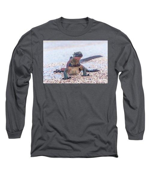 Marine Iguana On Galapagos Islands Long Sleeve T-Shirt by Marek Poplawski