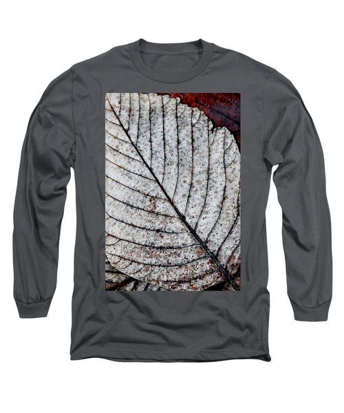 Beautiful Winter Leaf Long Sleeve T-Shirt