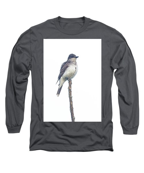 Eastern Kingbird Long Sleeve T-Shirt
