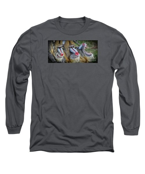 3 Male Mandrills  Long Sleeve T-Shirt by Jim Fitzpatrick
