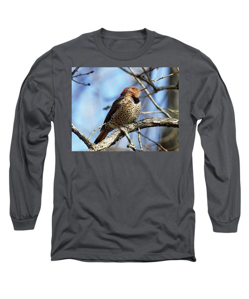 Northern Flicker Woodpecker Long Sleeve T-Shirt
