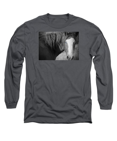 Wild Mustang Horse Long Sleeve T-Shirt