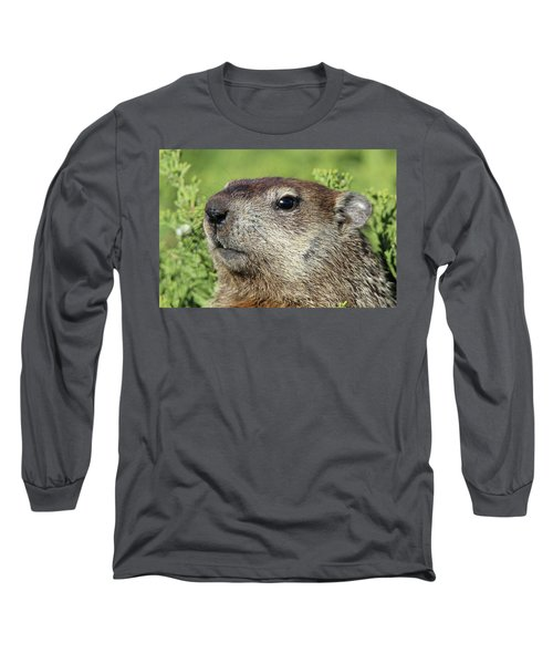 Woodchuck Calverton New York Long Sleeve T-Shirt by Bob Savage