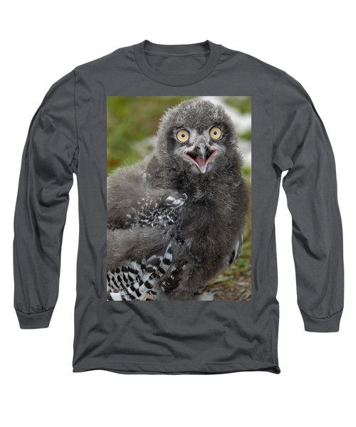 Baby Snowy Owl Long Sleeve T-Shirt by JT Lewis